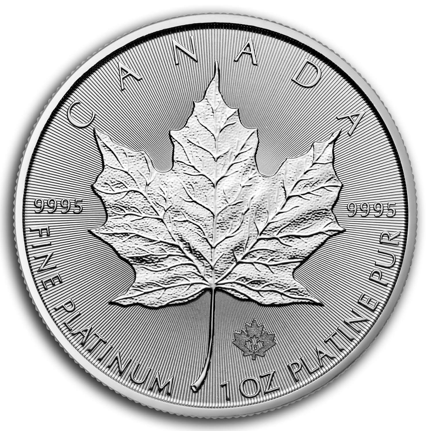 1 Oz Canadian Palladium Maple Leaf Coin Dates Vary Bu