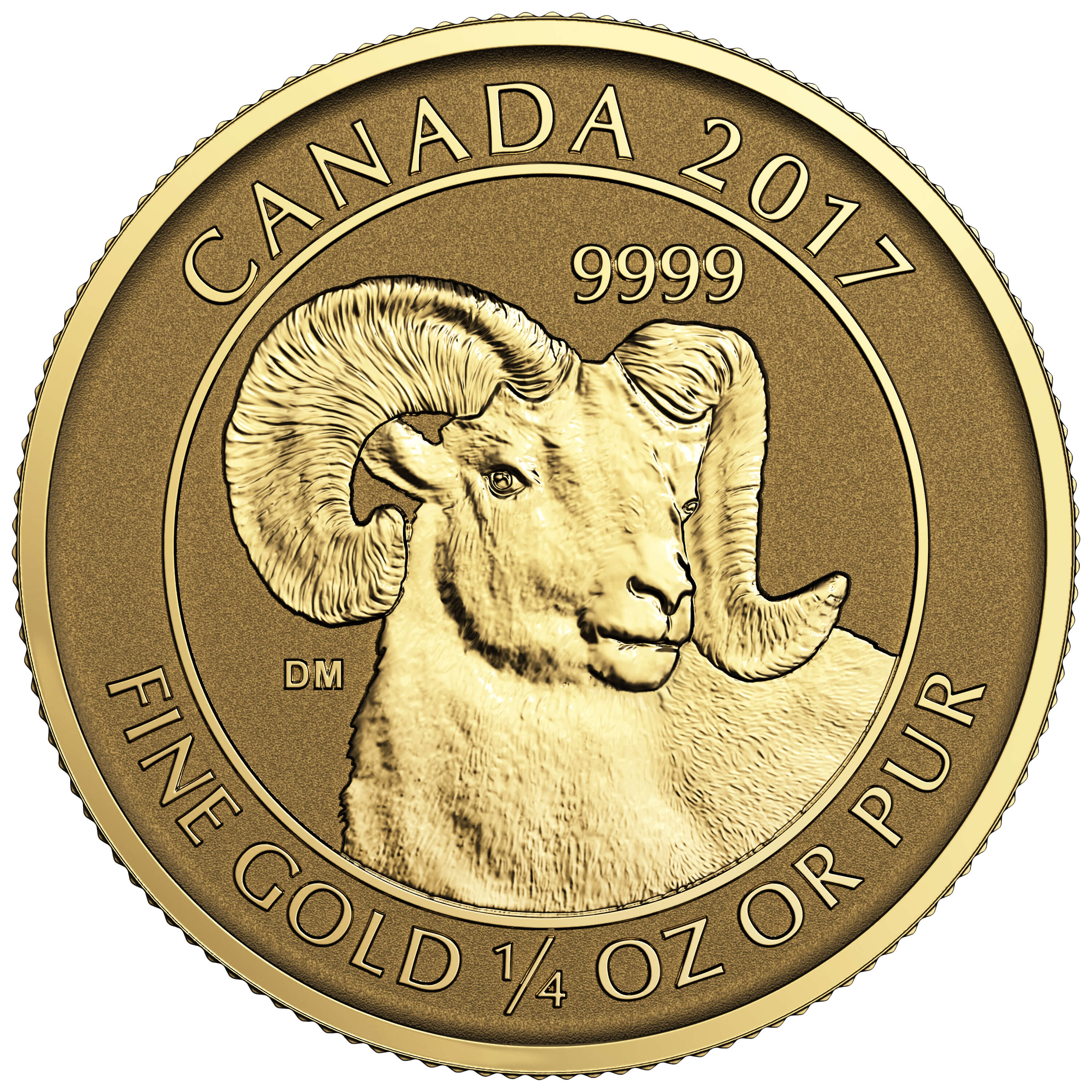 2017 Canadian Horn Sheep 1 4 Oz Gold Coin